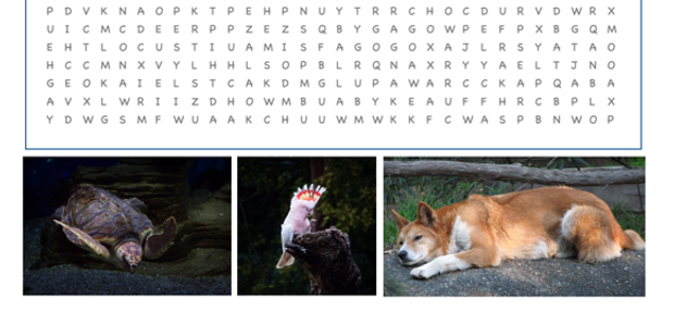 Australian animals word search puzzle